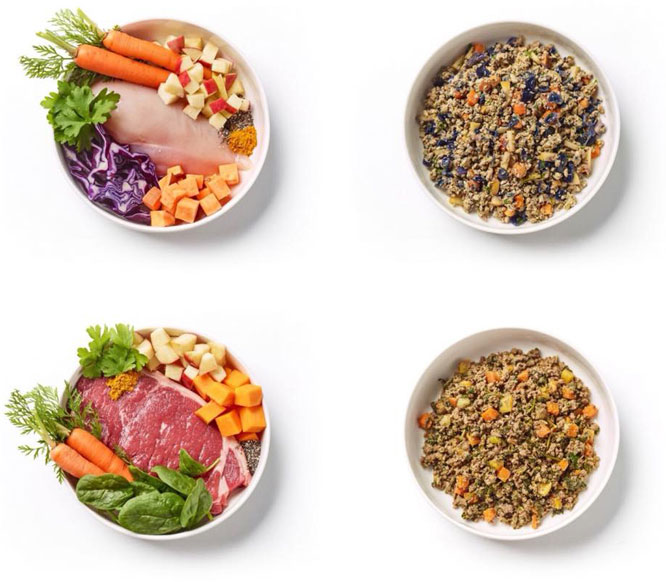 What makes our Dog Food Special?