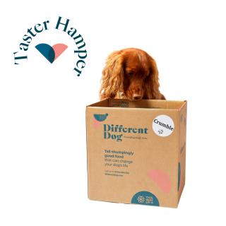 different dog dog food taster hamper
