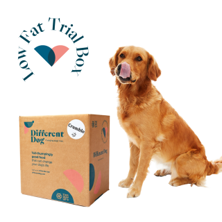 low fat dog food - healthy - different dog